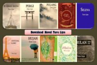 Download Novel Tere Liye